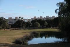 1 Alicante Golf (2)
